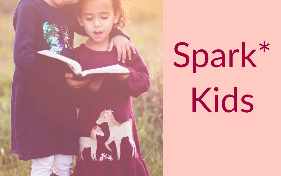 spark*: Self Regulation Program of Awareness and Resilience of Kids