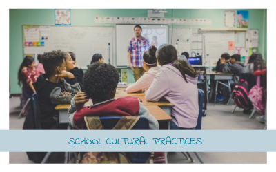 School Cultural Practices